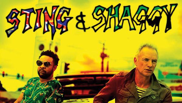 sting-shaggy